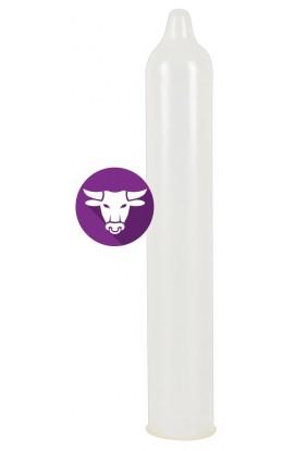 Secura El Toro – 24pack